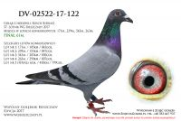 DV-02522-17-122
