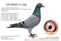 DV-05059-17-326