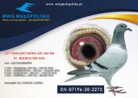 DV 07196 20 2272 DR. TARGATZ ANGELA -  6 AS LOTNIK !!! 5/5konkursów!!!  FINAŁ -   21m, 4 konk - 54m,     1 konk. - 12m,        RÓWNE KONKURSY!!!!!!
