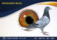 DV 09715 20 534 Oryginał REINHARD MUHL - HERBOTS