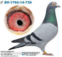 DV-1764-2014-739-100% Leo Heremans