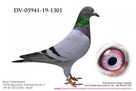 DV-5941-19-1301