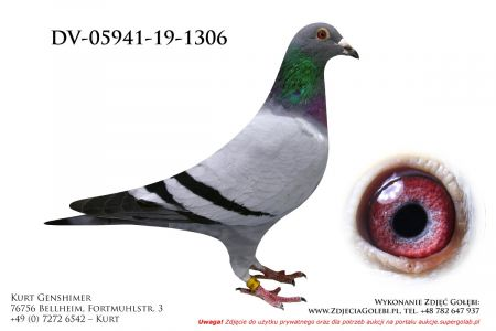 DV-5941-19-1306