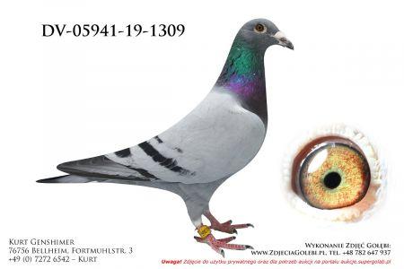 DV-5941-19-1309