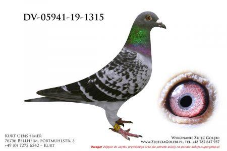 DV-5941-19-1315