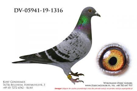 DV-5941-19-1316