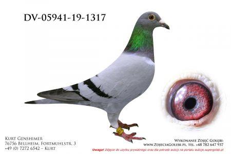 DV-5941-19-1317