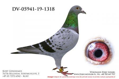 DV-5941-19-1318