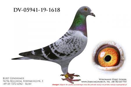 DV-5941-19-1618