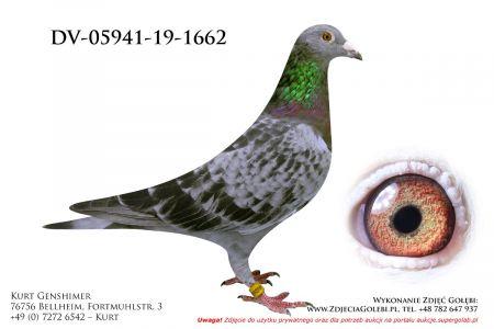 DV-5941-19-1662