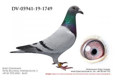 DV-5941-19-1749