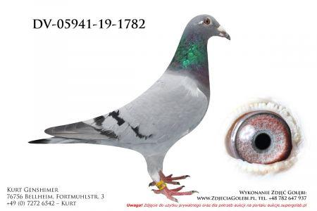 DV-5941-19-1782
