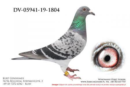 DV-5941-19-1804