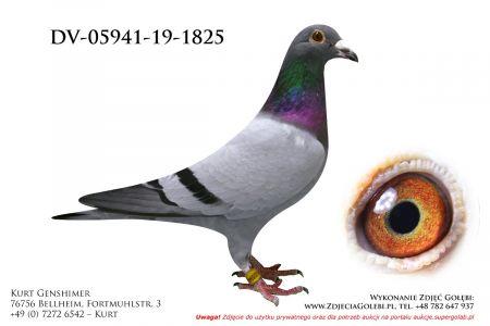 DV-5941-19-1825