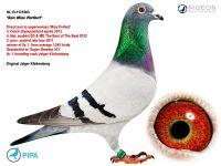 NL-13-1121603 Jelger Klinkenberg