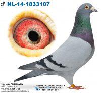 NL-2014-1833107 Linia Koopman, Heremans-Ceusters