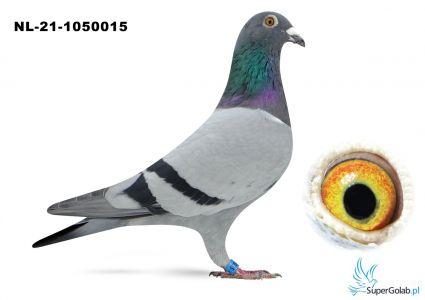 NL-21-1050015