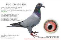 PL-0100-17-5238