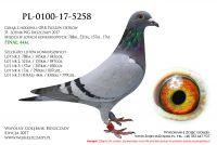 PL-0100-17-5258