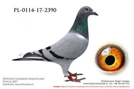 PL-0114-17-2390