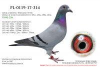 PL-0119-17-314