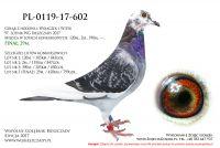 PL-0119-17-602