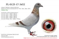 PL-0125-17-3452