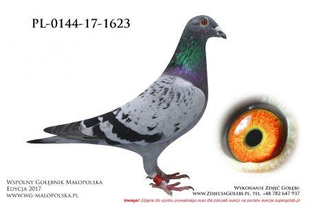 PL-0144-17-1623