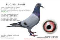 PL-0163-17-4408