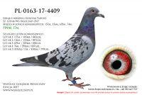 PL-0163-17-4409