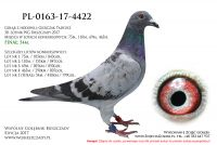 PL-0163-17-4422