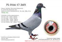 PL-0166-17-2601
