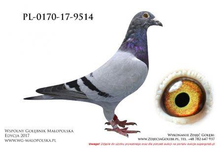 PL-0170-17-9514