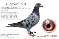 PL-0174-17-10417