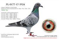 PL-0177-17-5924