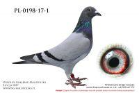 PL-0198-17-1