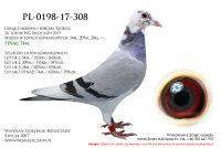 PL-0198-17-308