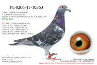 PL-0206-17-10363