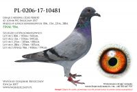 PL-0206-17-10481