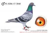 PL-0206-17-3040 - samczyk
