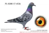 PL-0208-17-4526