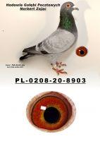 PL-0208-20-8903