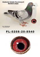 PL-0208-20-8940