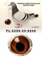 PL-0208-20-8948