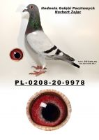 PL-0208-20-9978