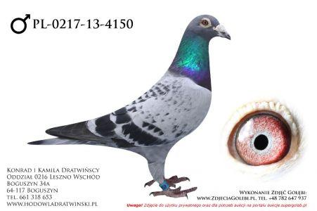 PL-0217-13-4150 - samczyk