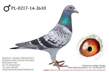 PL-0217-14-2610 - samczyk