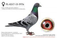 PL-0217-15-5976