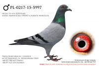 PL-0217-15-5997