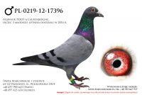 PL-0219-12-17396